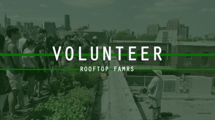 rooftop volunteer
